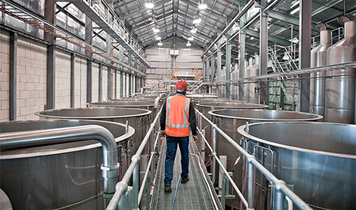 A man in safety clothes walks between two long rows of shiny metal vats inside a winery building