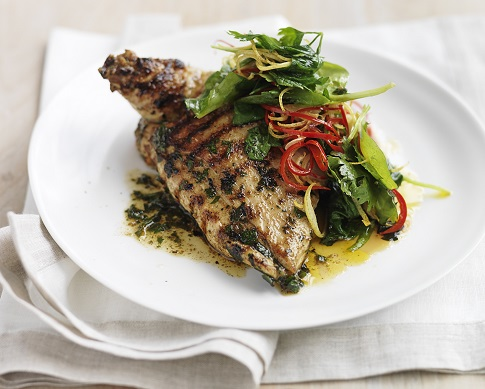 Plate of grilled Moroccan spiced chicken